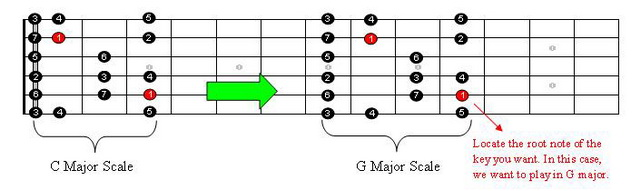 Guitar Major Scale Transpose