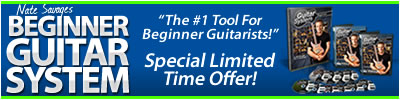 beginner guitar system sale